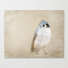 Bird Little Blue Canvas Print