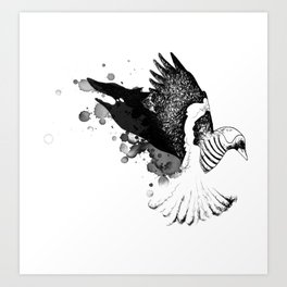 Black Fox winged Magpie Art Print