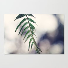 Botanical Beauty Canvas Print