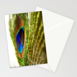 Shimmering Peacock Stationery Cards