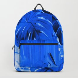 A Philodendron in blue Backpack