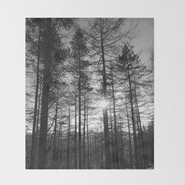 Winter Pine Forest 1 Throw Blanket