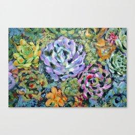 Colorful Succulents, Fine Art Prints, Cactus Wall Art, Original Artwork Design Canvas Print