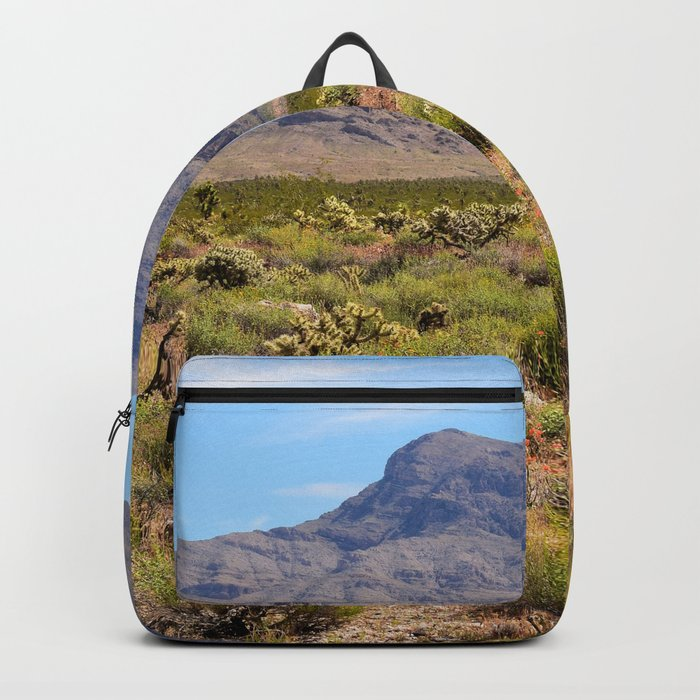 Painted Desert - I Backpack