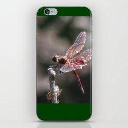 Small Dragon 6, Fantasy iPhone Skin