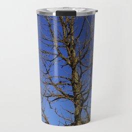 Bur Oak, Quercus macrocarpa, Wisconsin tree, prairie, savanna Travel Mug