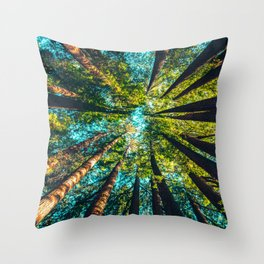 Looking Up At Trees In A Dense Forest Throw Pillow