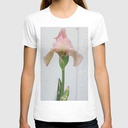 Pink Iris  T-shirt