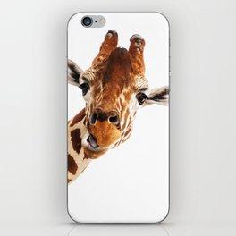 Giraffe Portrait // Wild Animal Cute Zoo Safari Madagascar Wildlife Nursery Decor Ideas iPhone Skin