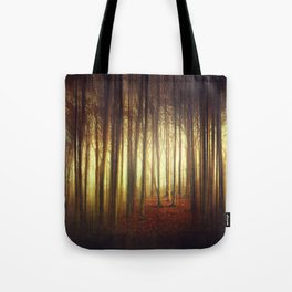 passage into the light Tote Bag
