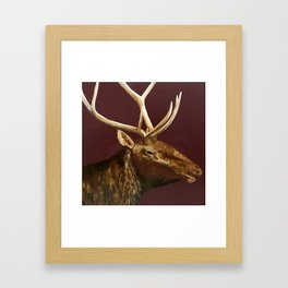 Big Bull Elk Profile Framed Art Print