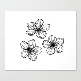 Sakura flower Canvas Print