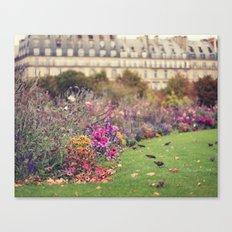 little birds Canvas Print