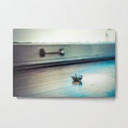 A Bugs Life... Metal Print