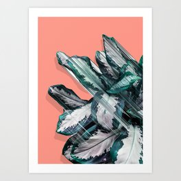 Skyward Plant Art Print