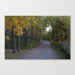 Illinois Autumn Trail Canvas Print