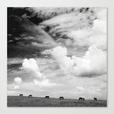 Horseland Canvas Print