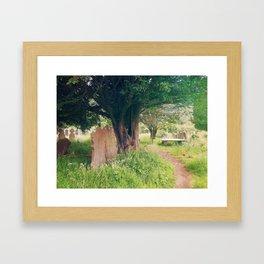 Ruins In Ireland Framed Art Print