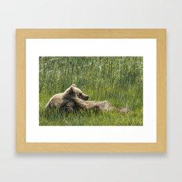Drifting Off - Bear Cubs, No. 7 Framed Art Print