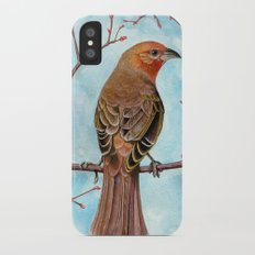 Hepatic Tanager Slim Case iPhone X