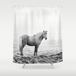 Horse in Icelandic Landscape Photograph Shower Curtain