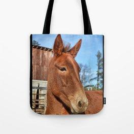 Clancy the Irish Mule Tote Bag