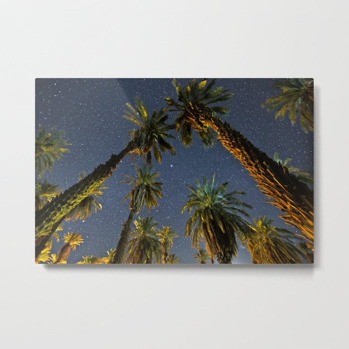 Midnight At The Oasis Metal Print