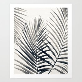 Black and White Palms Art Print