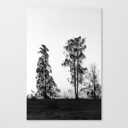 Trees in Black and White Photography Manipulation Canvas Print