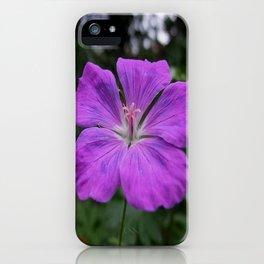 Violet Viola Flower With Garden Background  iPhone Case