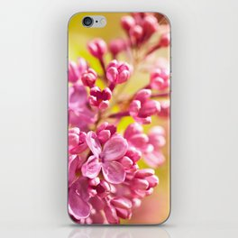 Lilac flowerets bloom bright pink iPhone Skin