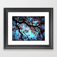 La Magnolia Framed Art Print