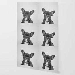 Bulldog Puppy - Black & White Wallpaper