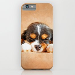 Cavalier King Charles Spaniel Puppy iPhone Case