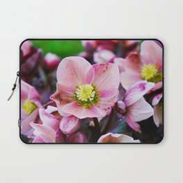 February Blooms Laptop Sleeve