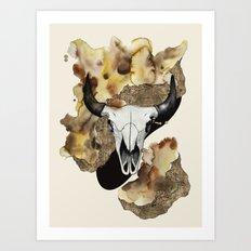 Buffalo Skull by carographic Art Print