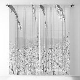 A Whisper Sheer Curtain