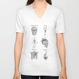 Anatomy lessons Unisex V-Neck