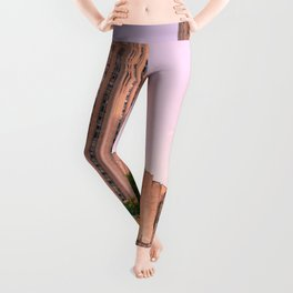 Pittsburgh Cathedral Of Learning Flower Garden Leggings