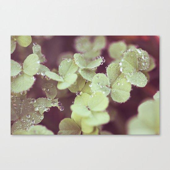 Crystal Beads Canvas Print