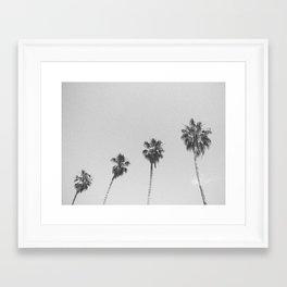 PALM TREES IV / San Francisco, California Framed Art Print
