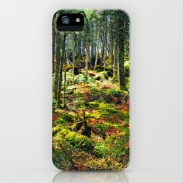 Late Spring Forest iPhone Case