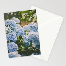 Little Blue Stationery Cards