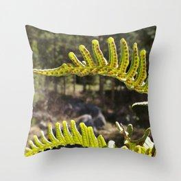 Sweet Fern Throw Pillow