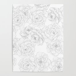 Peony Flower Pattern Poster