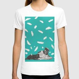 Kicks & Kittens T-shirt