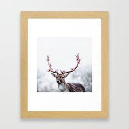 Blossom Deer Framed Art Print