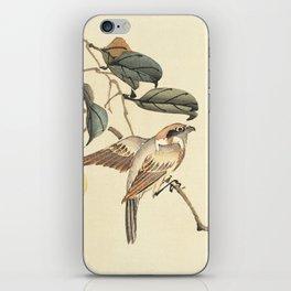 Vintage brown ivory bird floral tree branch iPhone Skin