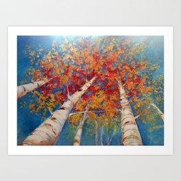 Birch tree point of view Art Print