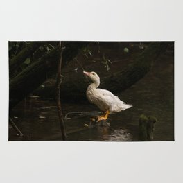 Domestic goose in the rain, wet white bird resting on a log in the water Rug